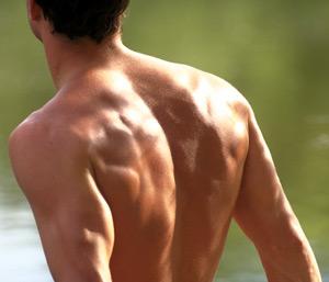 Man-Back-Muscles-ART