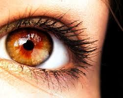 stw amber eye