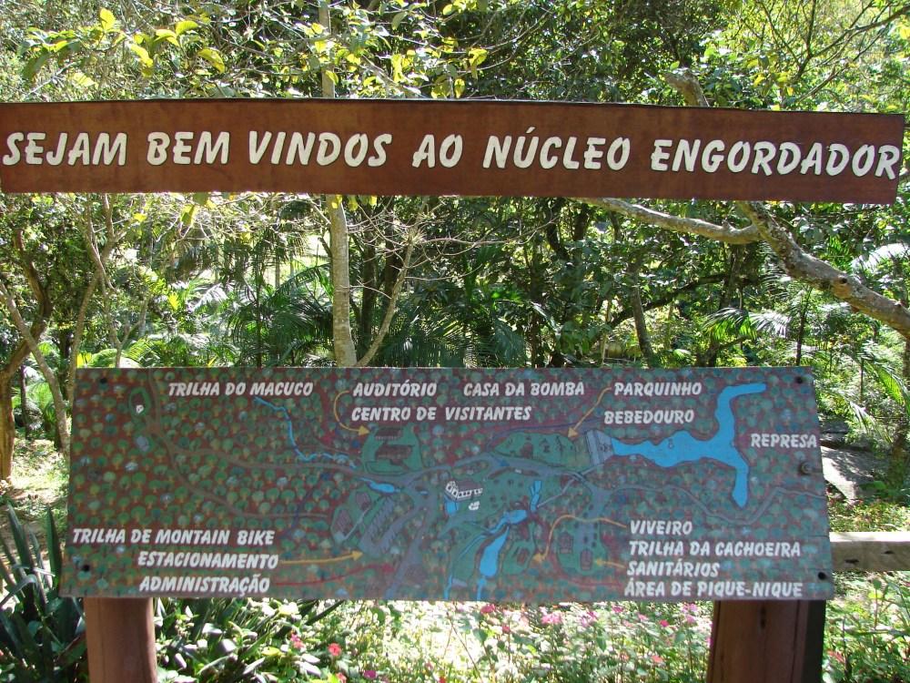 Núcleo Engordador - P.E. Cantareira (1/6)