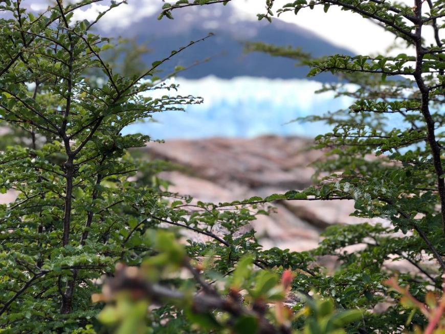 Passarela em Perito Moreno
