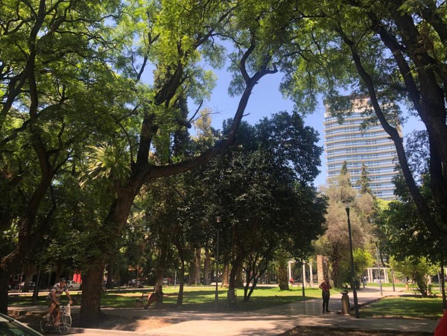 Praça arborizada em Córdoba