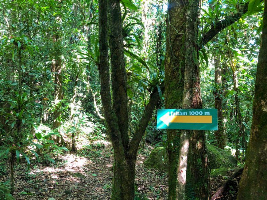 trilha bem identificada no ekoa park