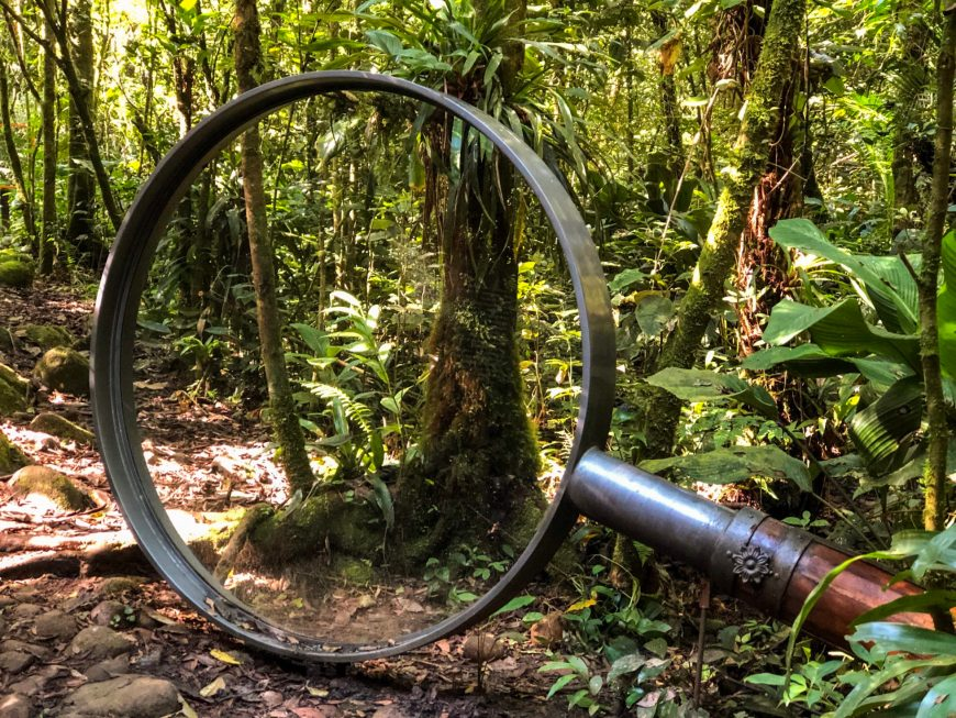 lupa gigante para observar a natureza na trilha da mata
