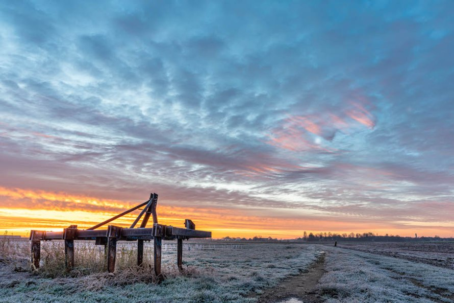 Why I love to shoot at Sunrise --> Ven-Zelderheide by Daan Wagner
