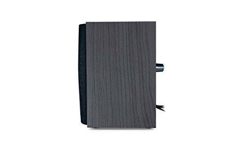 Genius 31731063100 Bocinas, Madera, USB, 4W, Color Negro - VendeTodito