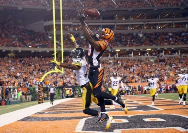 AFC North 2017 Predictions