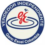 Vendedor Independiente Gano Excel