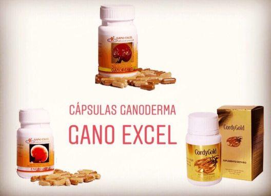 CAPSULAS GANODERMA Y EXCELLIUM GANO EXCEL