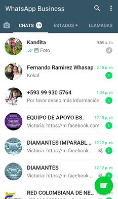 Vista de Chats WhatsApp Business