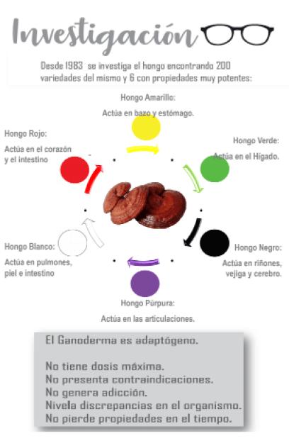 Investigación del extracto de ganoderma lucidum