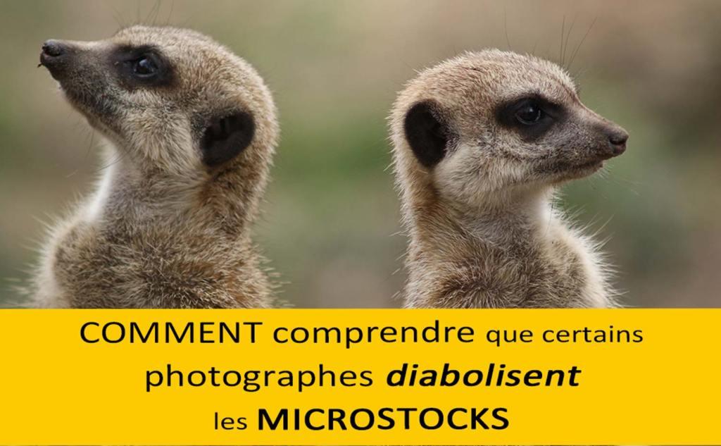 Microstock diabolisé Vendre ses photos en ligne