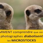 Comment comprendre que certains photographes diabolisent les microstocks