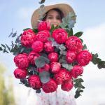 Peony Red 25 Flower, Venera Flowers, online flower delivery dubai