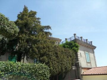 Palazzo Tullio-Cataldo, particolare