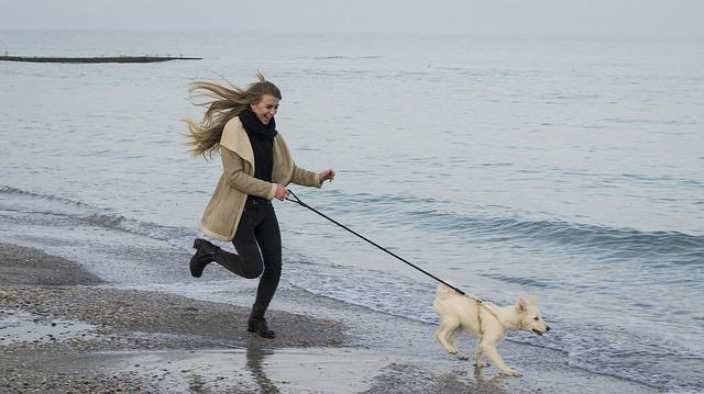 海辺で犬の散歩をする女性