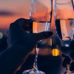 date night in venice florida