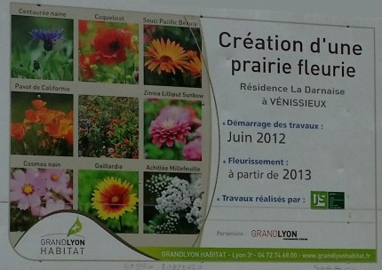 Affichage Prairie fleurie
