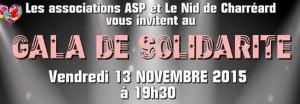 Bannière_ASP gala de solidarité