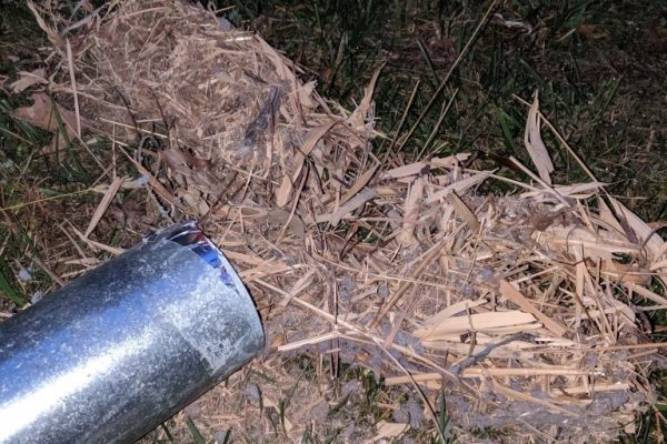 dryer vent birds nest clog