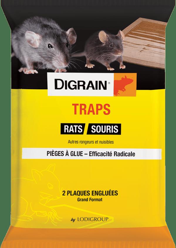 Digrain Traps piège à glue pour rat et souris