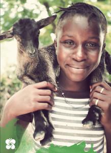 Goat Blog Photo3