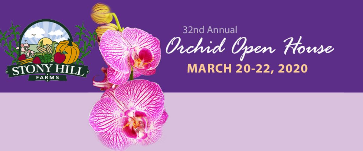 ventivines-orchid2020