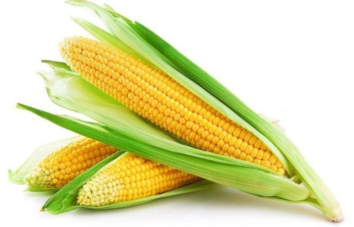 Очистка и калибровка кукурузы