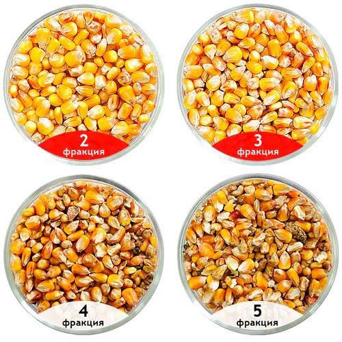 Сепарация кукурузы, калибровка кукурузы, очистка кукурузы