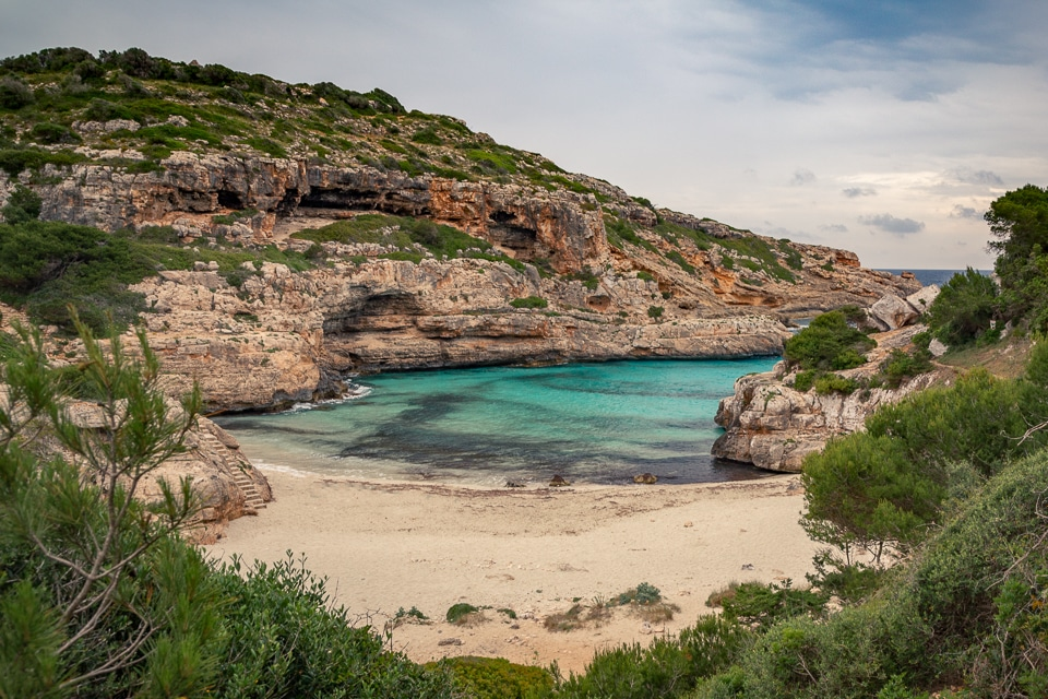 Cala murols