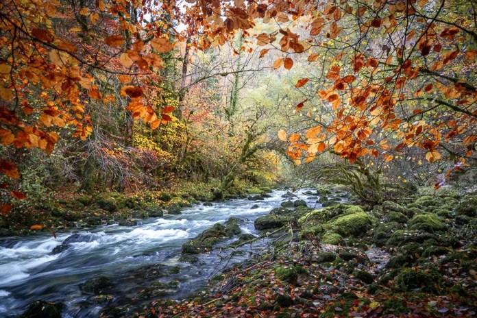 gorges flumen jura autumn