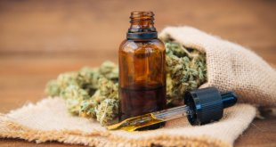 Should You Use CBD OIL? Here Are The Benefits and Uses