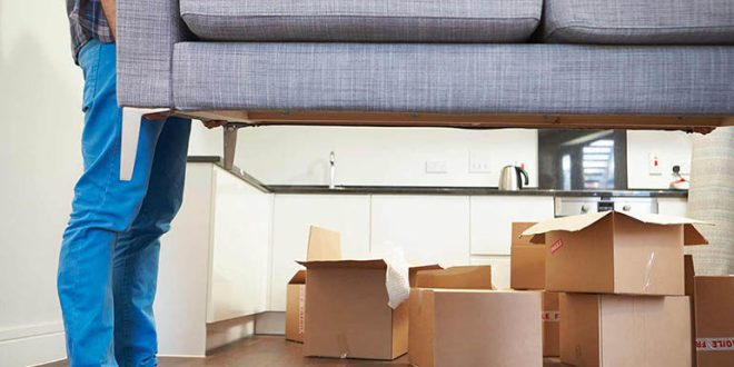 Admirable The Incredible Furniture Movers In Melbourne Download Free Architecture Designs Scobabritishbridgeorg