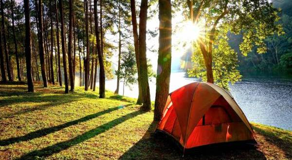 WHY YOU SHOULD GO CAMPING RIGHT NOW