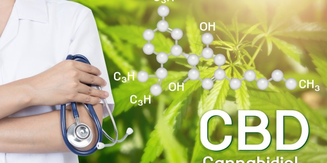 We Explain the Different CBD Forms and Pros and Cons of Each