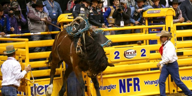 NFR Live Stream 2019 | Watch National Finals Rodeo Online Free TV