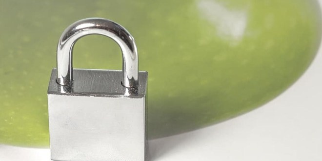 What Are the Most Secure Locks to Prevent Lock Snapping