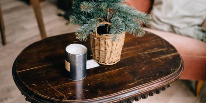 cute christmas tree on table in room