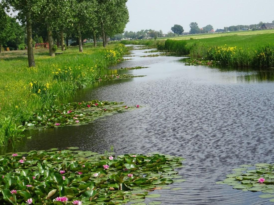 D:\jecke-hexe\Pictures\Solitaire\Friesland 2018\10 bis Sneek\Ijlst\DSC00947.JPG