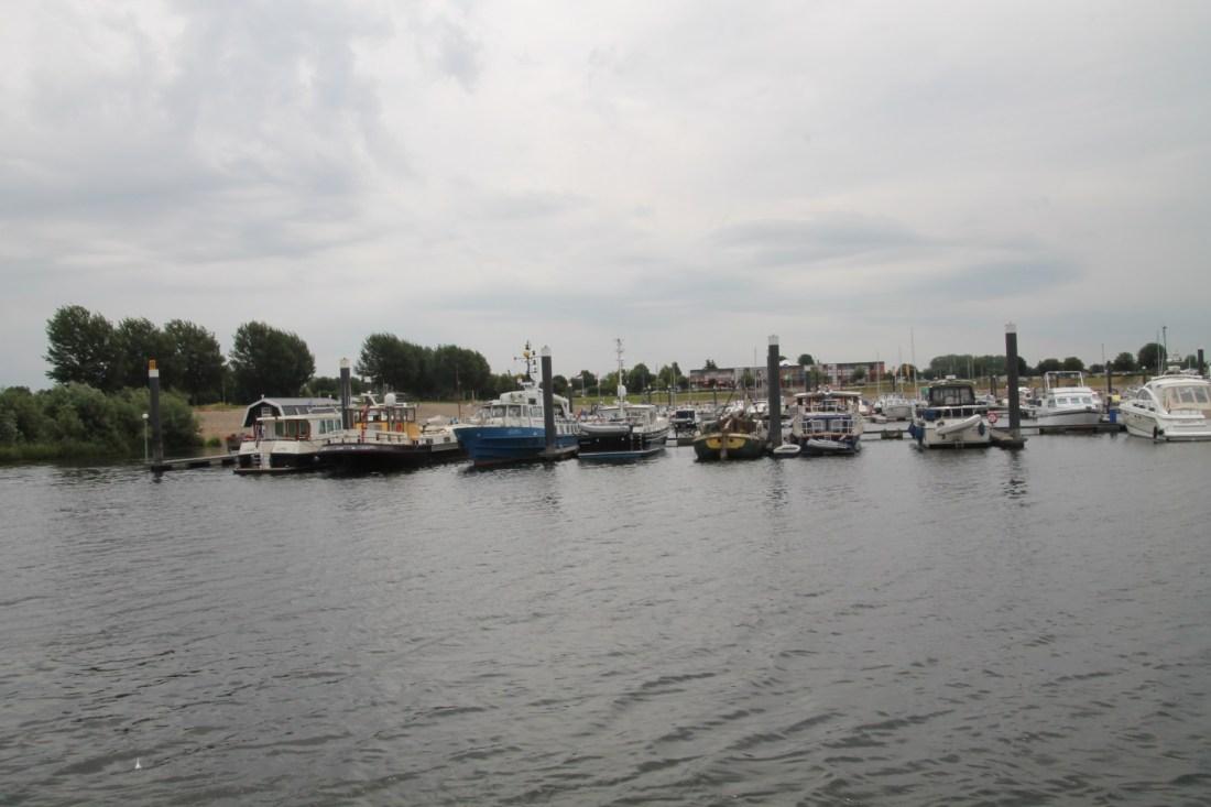 F:\Solitaire\Biesbosch 6_15\Fotos\8 bis Lithse Ham 07_07_15\IMG_1075.JPG