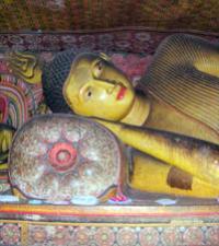 Gay Group Tours of Sri Lanka