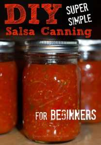 DIY Salsa Canning for Beginners