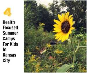 4 Kansas City Health-Focused Kids Summer Camps You Need to Know About #CMHmoms