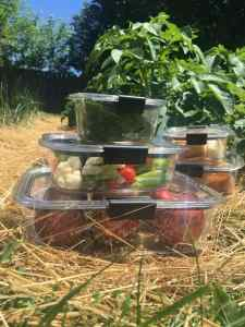 BRILLIANCE Food Storage from Rubbermaid – Review & Giveaway