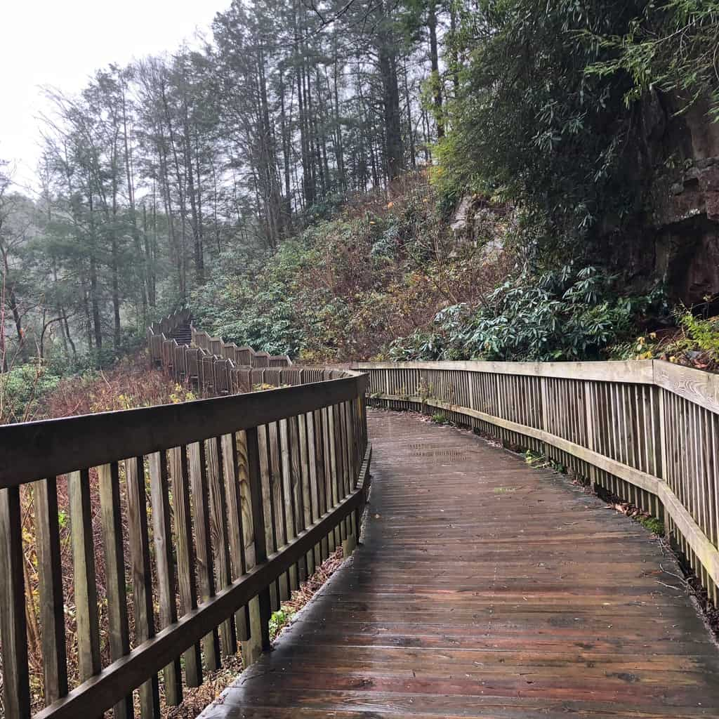 Blackwater Falls Boardwalk