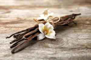 Vital, Versatile Vanilla! 4 Reasons It's Anything But Bland