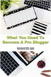 Everything You Need To Be A Professional Blogger