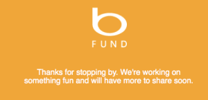 Screenshot of the Bing Fund placeholder website