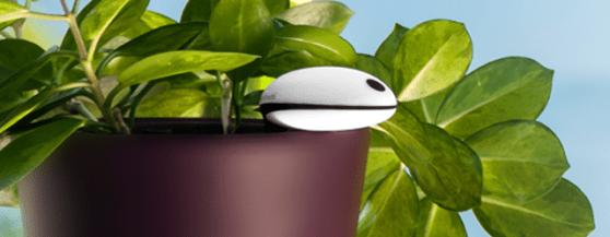 plant-sensor