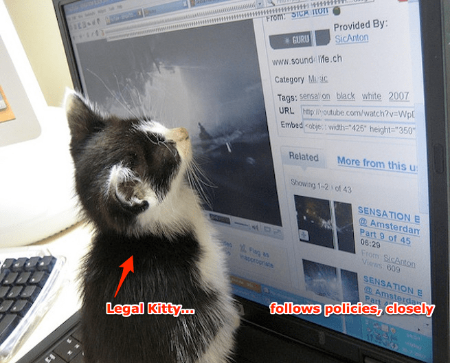 Tech policy kitty