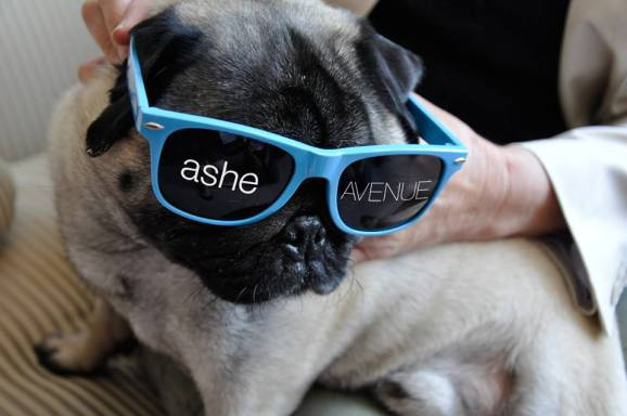Ashe Avenue swag.